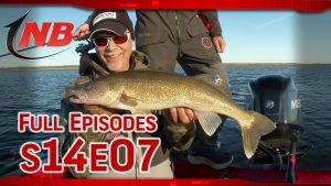 Season 14 Episode 7: Fall Leech Lake Walleyes