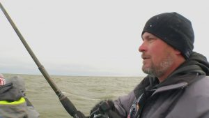 Saginaw Bay Walleye Migration